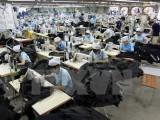Việt Nam được dự báo là thị trường mới nổi có hoạt động M&A tăng mạnh