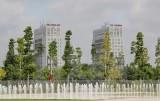 Xây dựng đô thị tăng trưởng xanh: Từ kinh nghiệm đến thực tiễn