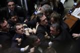 Nghị sỹ Italy lao vào ẩu đả tại buổi họp thông qua luật giáo dục
