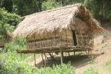 Bắt nghi can vụ thảm sát 4 người giữa rừng tại Nghệ An