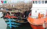 31 thuyền viên bị nạn tại Hoàng Sa đã về đến Đà Nẵng
