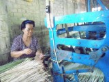 Một ngày ở làng dệt chiếu lác Long Cang, Cần Đước