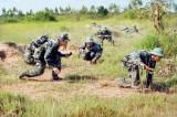 LLVT Long An: Rút kinh nghiệm diễn tập chiến thuật có bắn đạn thật năm 2015