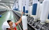 """Vào TPP: Việt Nam đang vào giai đoạn """"phát triển dồn ép"""" chưa từng có"""