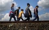 EC kêu gọi các nước thành viên tiếp nhận người nhập cư