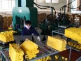 Việt Nam đẩy mạnh hợp tác với Hội đồng Cao su quốc tế ba bên