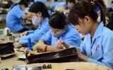 Năng suất lao động: 50 năm nữa, Việt Nam mới đuổi kịp Thái Lan