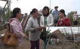 Tân Thạnh hỗ trợ các gia đình bị thiệt hại do giông lốc