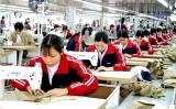 Kinh tế tư nhân - động lực để phát triển đất nước