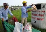 Bảo vệ môi trường trong sản xuất, kinh doanh, sử dụng thuốc BVTV