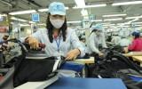 Xuất khẩu dệt may sẽ đem về 27,5 tỷ USD năm nay