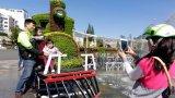 Festival hoa Đà Lạt chờ đón 500.000 lượt khách