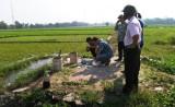 Bắt quả tang nông dân tưới nhớt thải lên ruộng rau muống