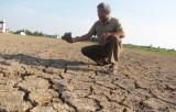 Vụ 5ha đất lúa bỏ hoang: 9 hộ dân không đồng ý đặt ống ngầm