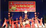 Hội trại Xuân thiếu nhi tỉnh Long An năm 2016