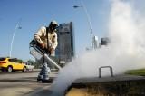 Brazil phát hiện virus Zika trong muỗi thông thường Culex