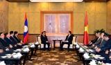 Thủ tướng Việt-Lào nhất trí tiếp tục xây dựng đường biên giới hòa bình