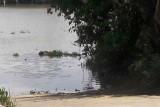 Châu Thành: Phát hiện xác chết trôi sông