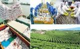 Xuất khẩu nông sản quý I tăng 3,1%, đạt 6,73 tỷ USD