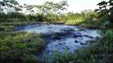 Rùng mình cảnh tượng ô nhiễm nguồn nước trên khắp thế giới