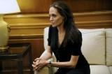 Angelina Jolie trở thành giáo viên thỉnh giảng