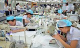 Mở lại tín dụng ngoại tệ gỡ khó cho doanh nghiệp xuất khẩu
