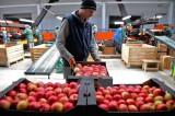 Nga cấm nhập lương thực-thực phẩm của các nước EU tới cuối 2017