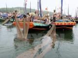 Hỗ trợ sinh kế cho 263.000 lao động bị thiệt hại do sự cố cá chết