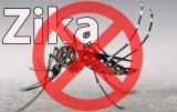 Thông điệp khuyến cáo phòng, chống dịch bệnh do vi-rút Zika