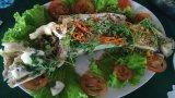 Cá lóc hấp nước cốt dừa ăn là ghiền