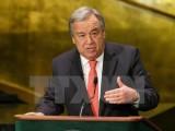 Cựu Thủ tướng Bồ Đào Nha dẫn đầu cuộc đua vào ghế Tổng thư ký LHQ