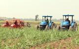 Cần đột phá chính sách thu hút đầu tư để ngăn nông nghiệp… lao dốc