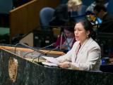 Việt Nam kêu gọi quốc tế xây dựng thế giới hòa bình và an ninh