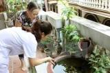 Bộ Y tế yêu cầu tỉnh Bình Dương xử lý ổ dịch virus Zika