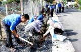 Đoàn Thanh niên thị trấn Cần Đước trồng cây xanh, cải tạo cảnh quan môi trường
