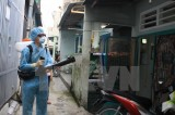 Thành phố Hồ Chí Minh tiếp tục phát hiện thêm các ca nhiễm virus Zika