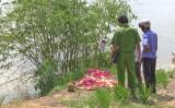 Mộc Hóa: Phát hiện xác chết trên đồng ruộng