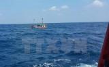Lại chìm tàu cá ở Bình Thuận, 11 thuyền viên được cứu kịp thời