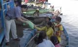 Việt kiều tại Campuchia nhận gạo do Thủ tướng Nguyễn Xuân Phúc tặng