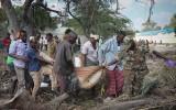 Đánh bom liều chết ở Somalia khiến 29 người thiệt mạng