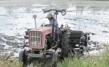 Lũ rút, nông dân tập trung gieo sạ lúa Đông Xuân đợt 3