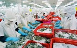Việt Nam xuất siêu 2,68 tỷ USD năm 2016