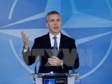 """NATO: Can thiệp vào bầu cử ở quốc gia khác là """"không thể chấp nhận"""""""