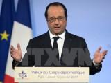 Bầu cử tổng thống Pháp: Phe cánh tả tiến hành bầu cử sơ bộ vòng 1