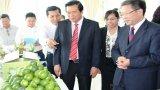 Đoàn đại biểu thành phố Bách Sắc (Trung Quốc) thăm và làm việc tại Long An