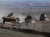 Iraq đã giải phóng được hơn 30% khu vực Tây Mosul