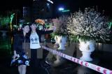 Khai mạc Lễ hội giao lưu văn hóa Hải Phòng-Nhật Bản