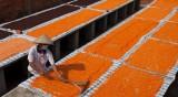 Đặc sản muối Tây Ninh: Khi hạt muối không chỉ là mặn