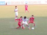 Tám đội bóng tham dự vòng chung kết giải bóng đá U19 quốc gia