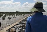 Cần chiến lược dài hạn chống sạt lở ven biển vùng ĐBSCL